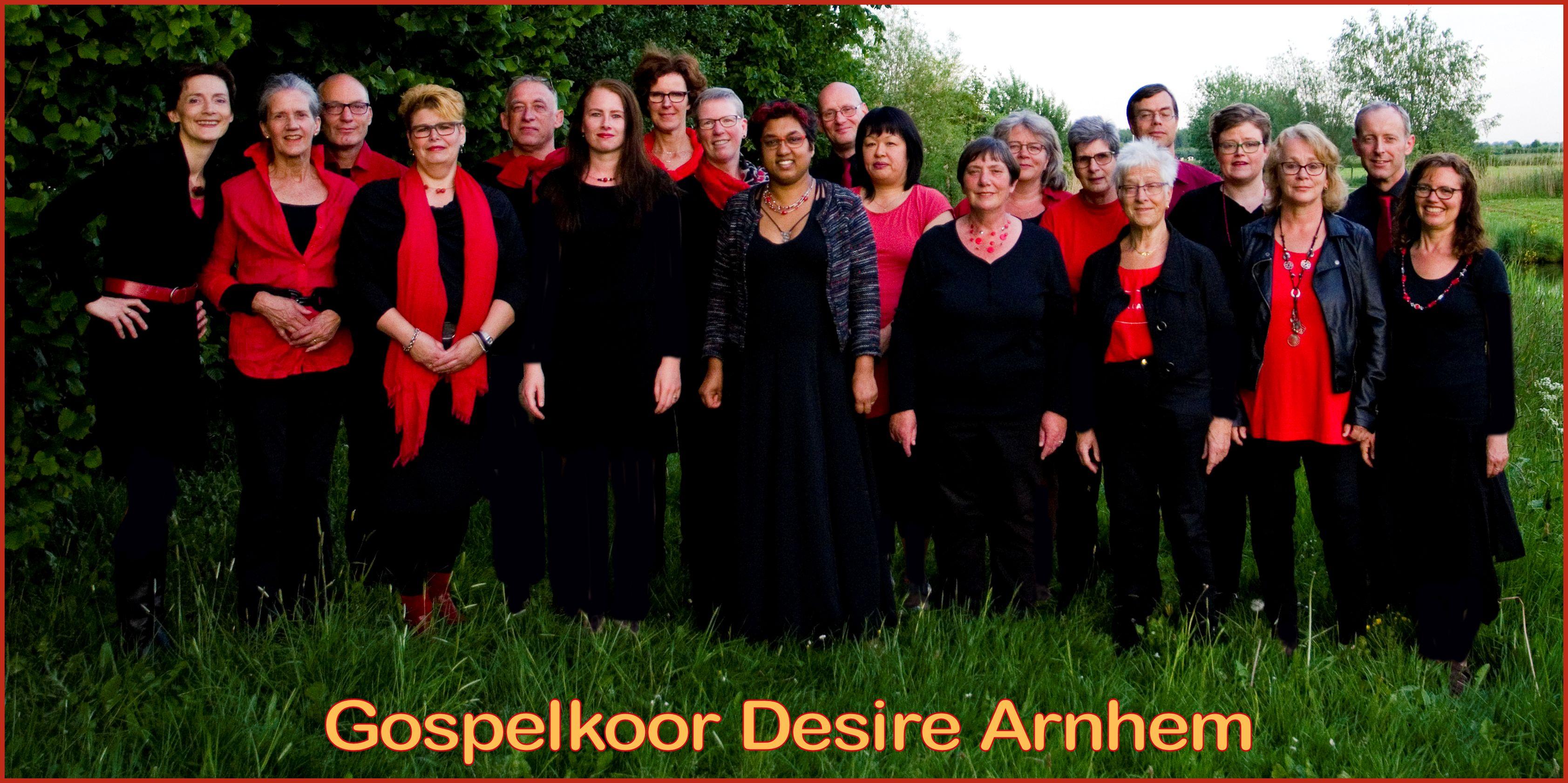 Groepsfoto Gospelkoor Desire Winter